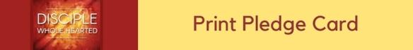 button-2017-stewardship-print-pledge-card