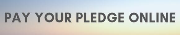 2019 Stewardship button pay