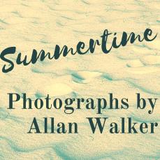 Instagram title Allan Walker Summertime